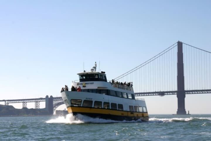 Tiburon Ferry (one way)