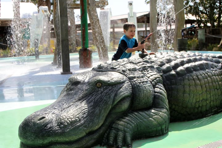 Serious fun at gator gully splash park at gatorland hqj6la