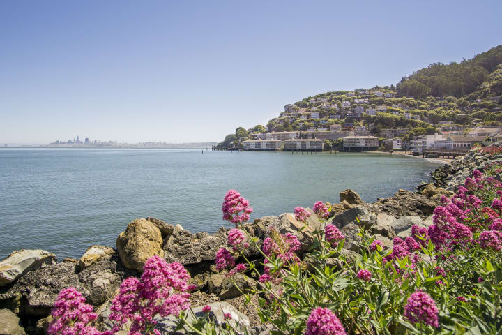 Enjoy the views in Sausalito