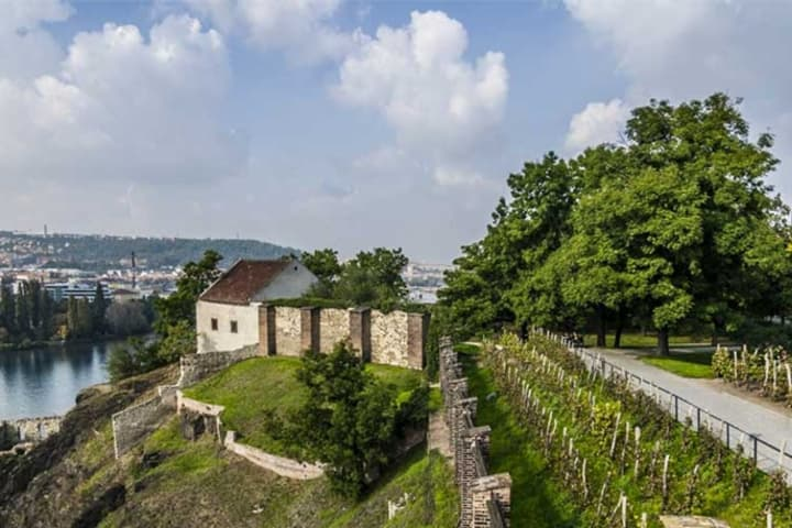 Bus & Vysehrad Castle tour