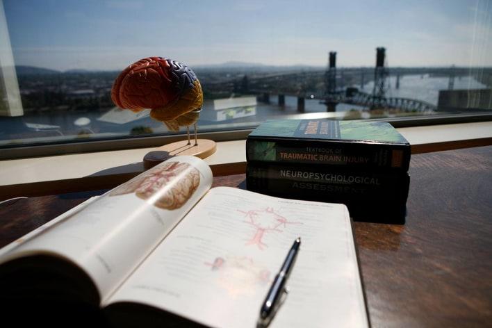 Brain anatomical model and book