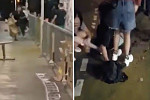 Man stabs himself in Hong Kong,...
