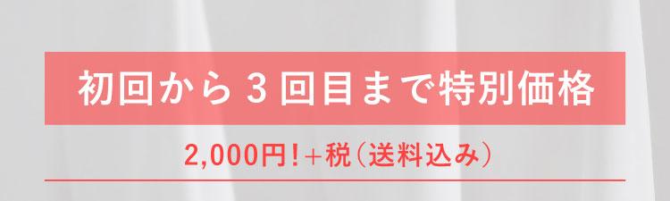 初回から3回目まで特別価格 2,000円!+税(送料込み)