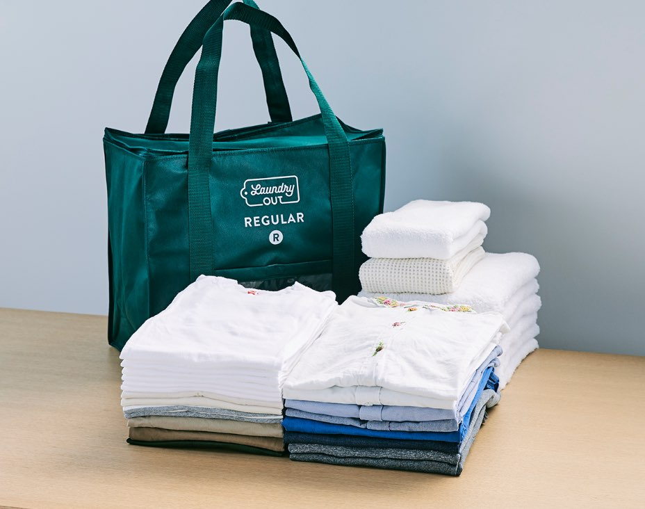 REGULARサイズ - バッグに入る洗濯物の例