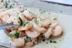 garlic shrimp   Classpop