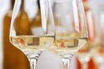 Sauvignon Blanc wine in glasses | Classpop