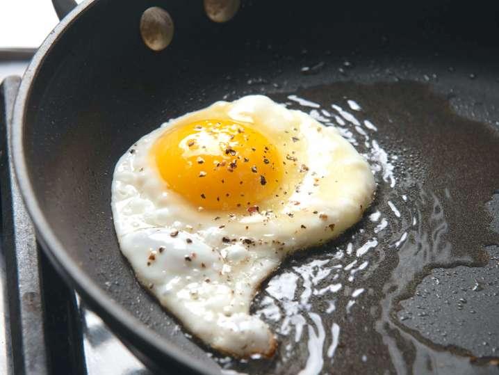 fried egg | Classpop