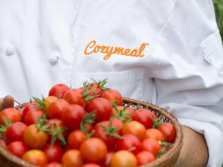 tomatoes for sauce | Classpop