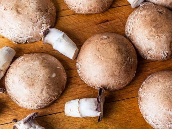 Mushrooms | Classpop