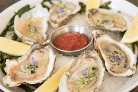 Become an Oyster Expert