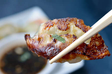 Japanese Dumplings and More
