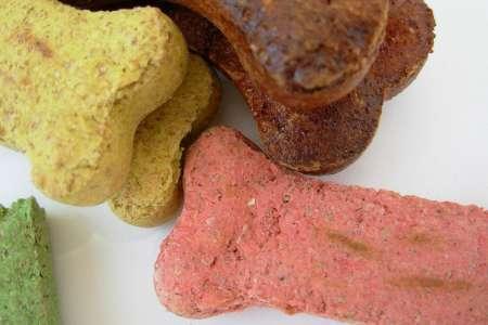 Homemade Dog Food and Treats
