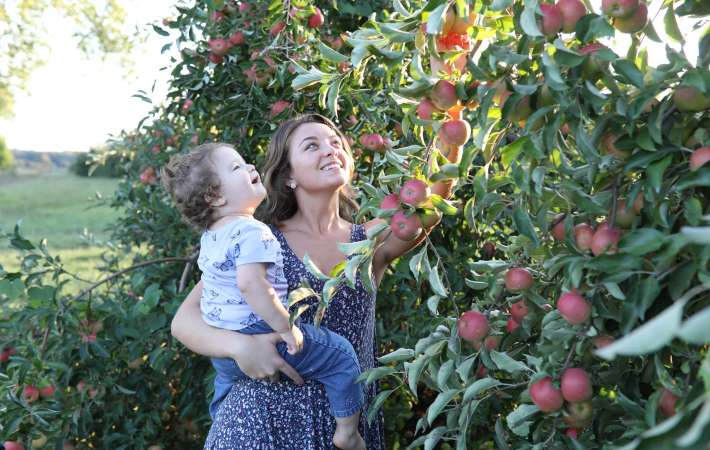 the wayne county apple tasting tour is one of the best food tours in new york