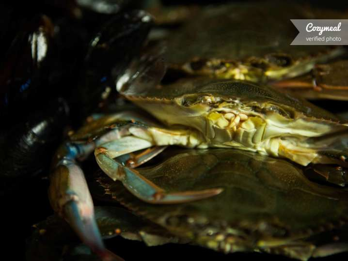 Crabs for seafood gumbo