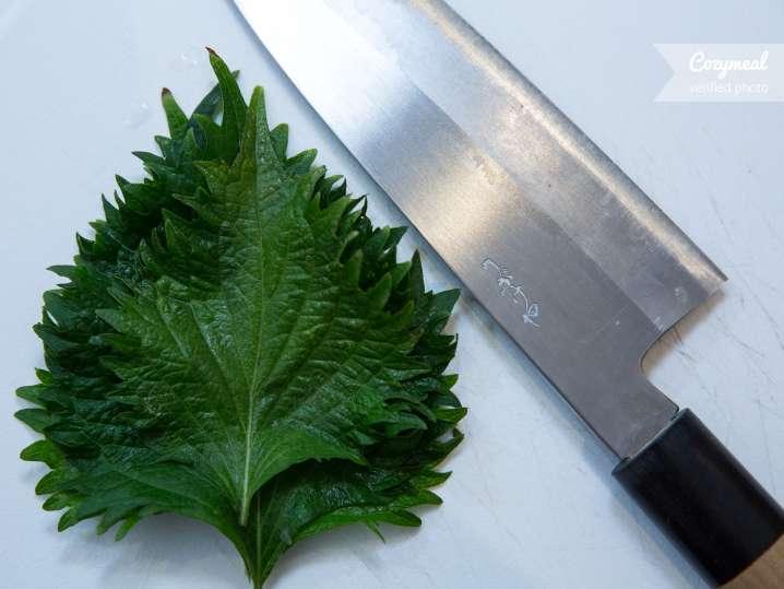 Chef Motoko Knife