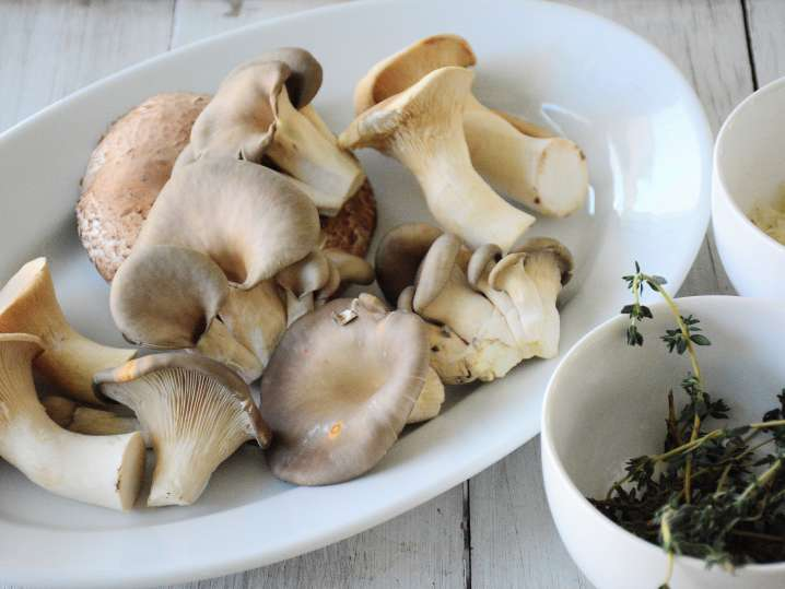 wild mushrooms on a plate with herbs and cheese