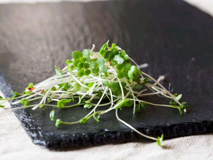 fresh bean sprouts on a slate cutting board