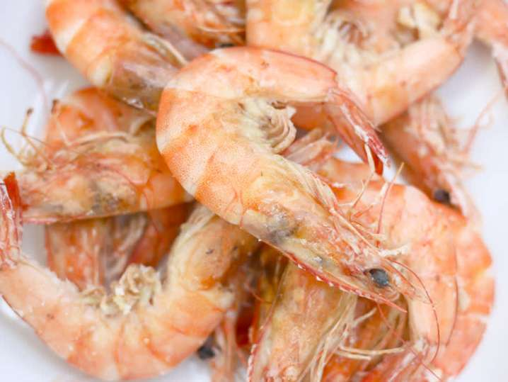 Shrimp   Classpop