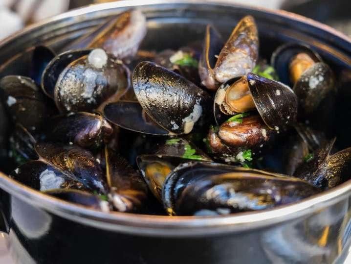 mussels | Classpop