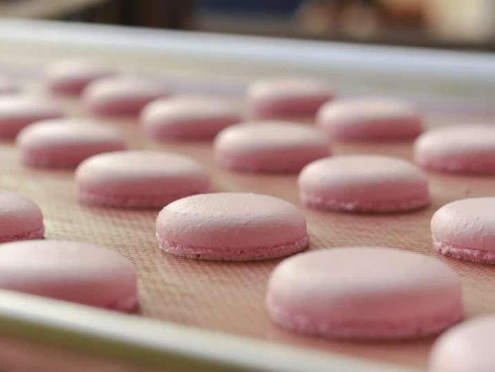Macaron Shells | Classpop