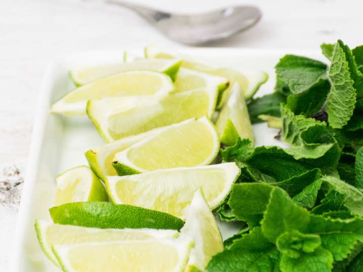 mint leaves and lime slices | Classpop