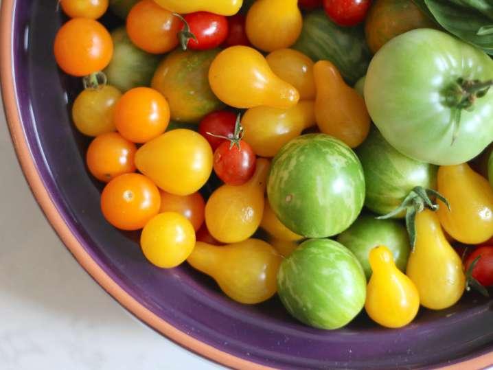 fresh tomatoes | Classpop