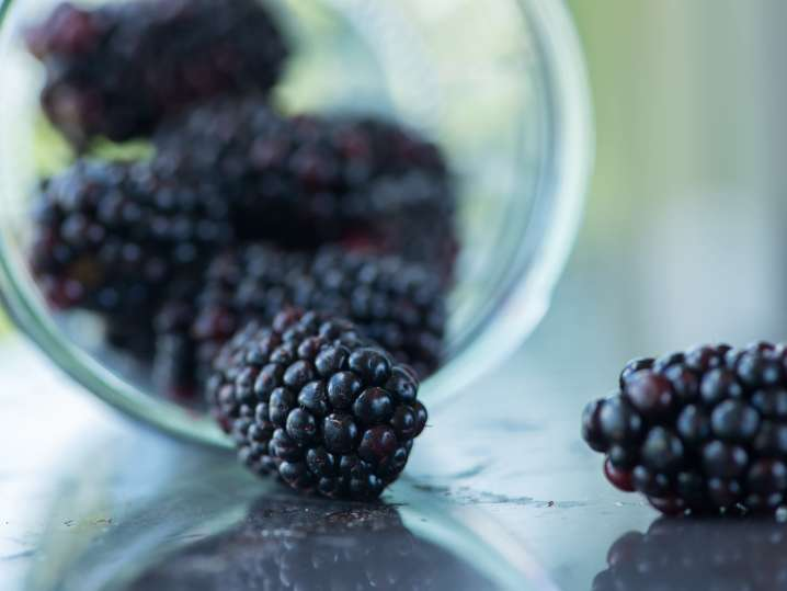Blackberries | Classpop