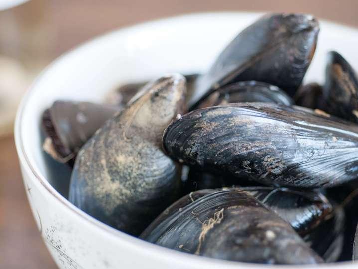 fresh mussels   Classpop