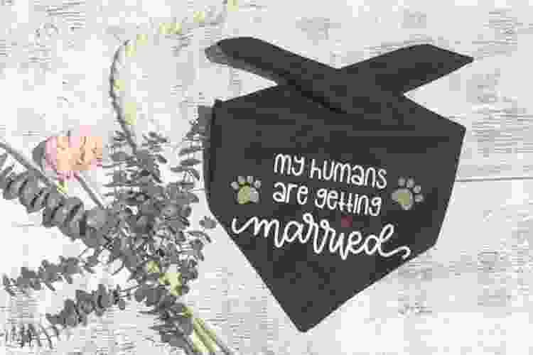 engagement dog bandana