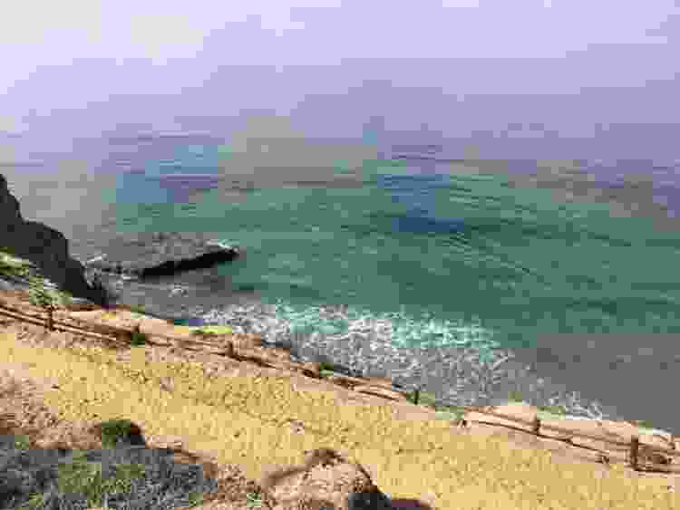 visit Torrey Pines State Natural Reserve as a fun team building activity in san diego