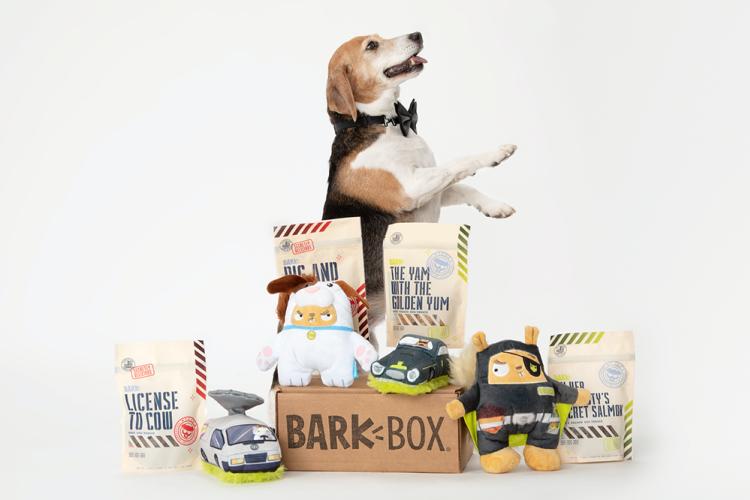 a barkbox subscription box with a beagle