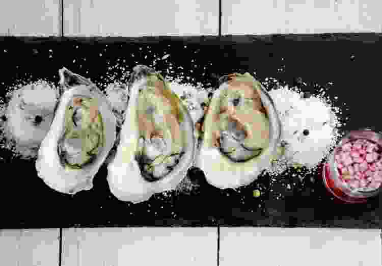 Arya's oysters make for a delicious Game of Thrones recipe appetizer