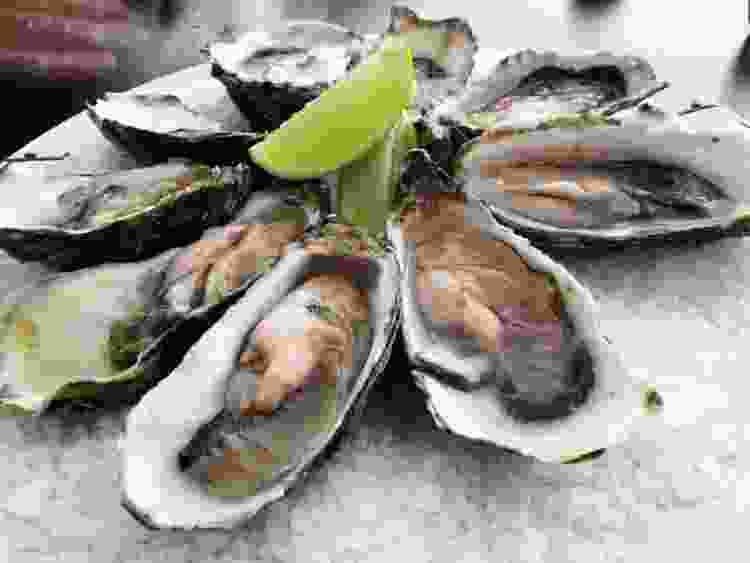 Oysters are one of the best san francisco foods