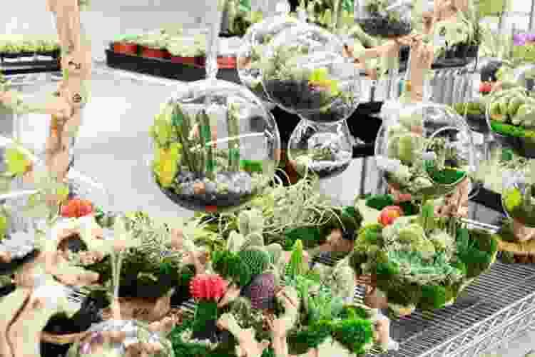 the Original Los Angeles Flower Market is a fun date idea in los angeles