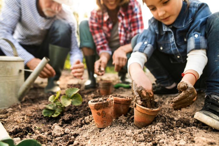 gardening together is a fun mother's day activity