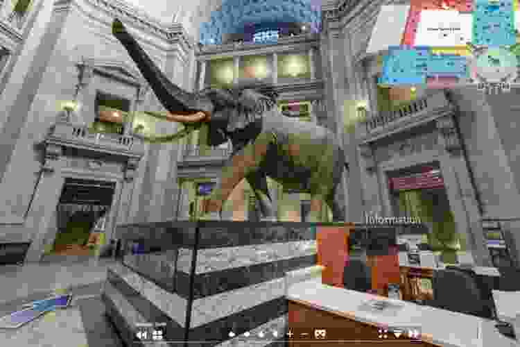 virtual museum tours are unique virtual team building activities