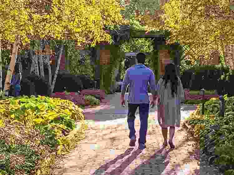 wander through a botanical garden for a fun anniversary date idea