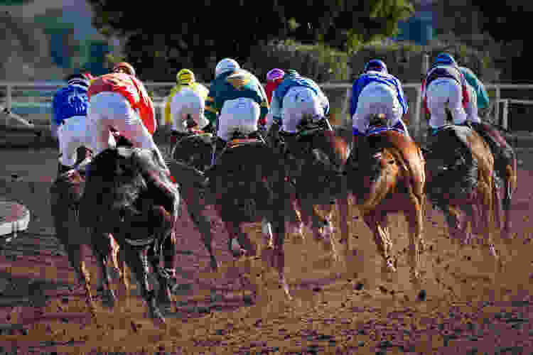 Head to the horse racing track for a great 50th birthday