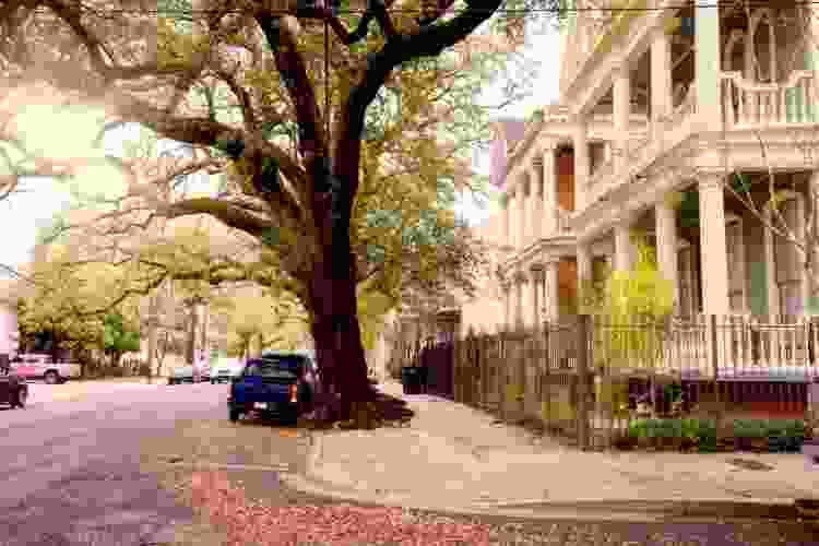 new orleans bike tours are some of the best new orleans tours