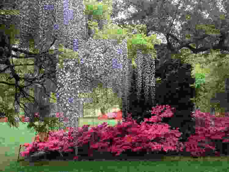 Take your date to the brooklyn botanic garden in NYC