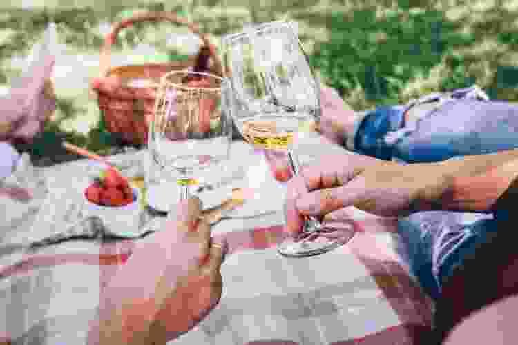 couple toasting wine glasses while enjoying a picnic