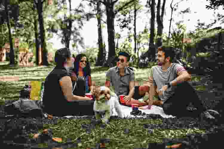 group of friends enjoying a picnic