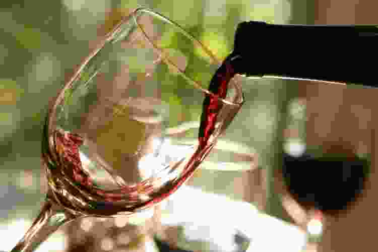 a virtual wine tasting is a great way to learn about pinot noir food pairings