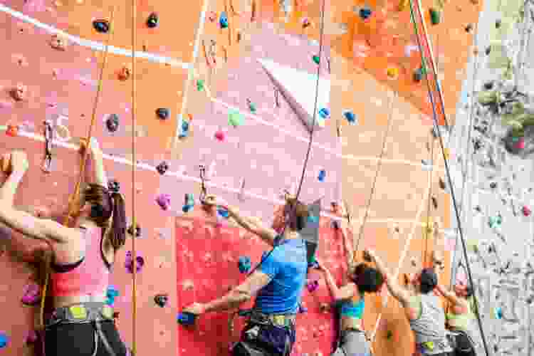 group of friends rock climbing in a gym