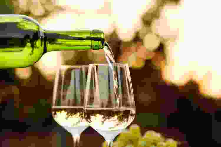 sauvignon blanc is one of the most common types of wine