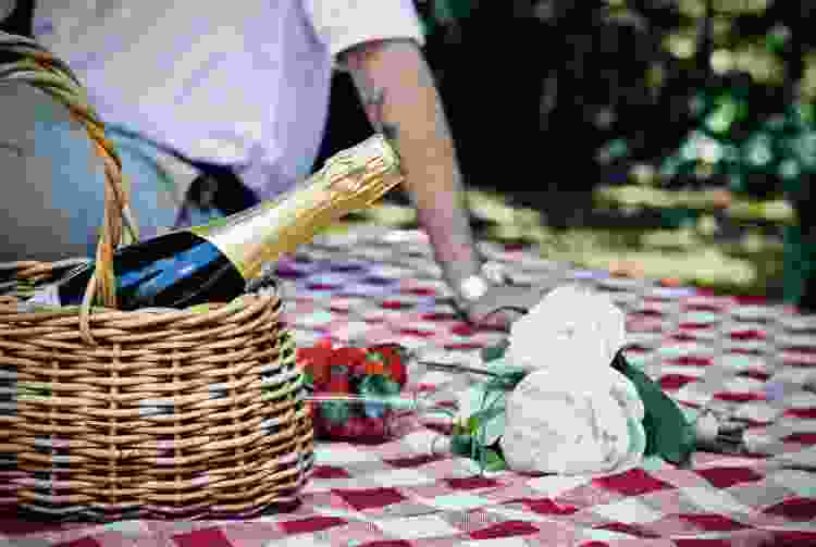 couple having champagne during a picnic