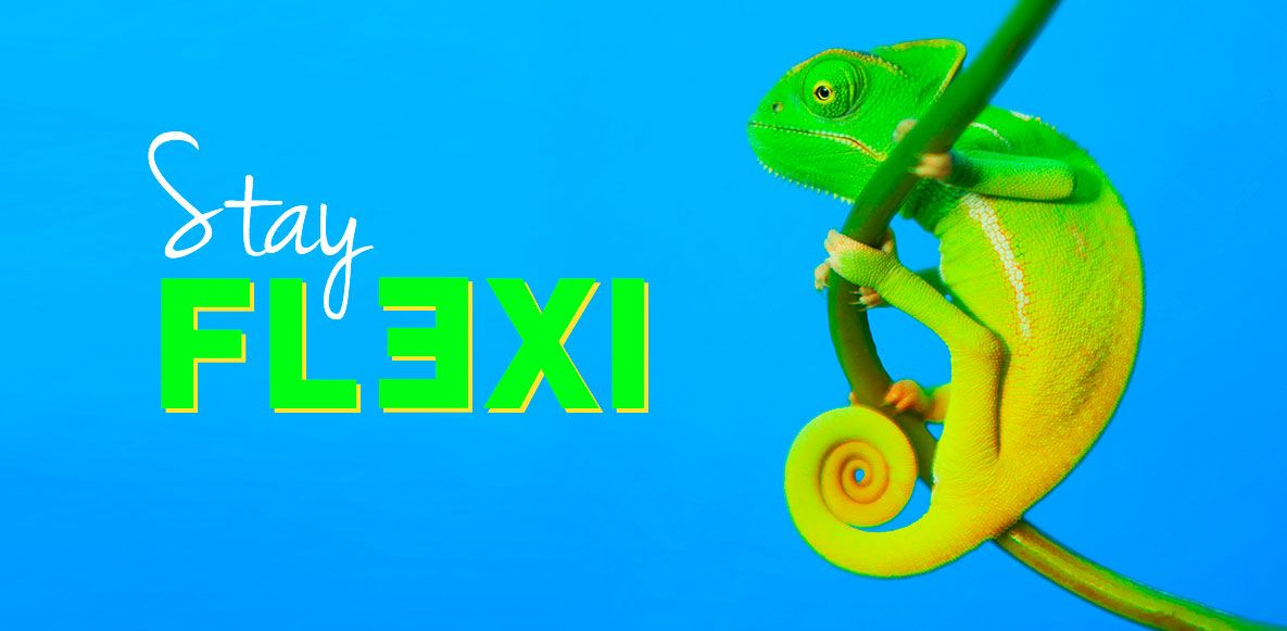 Stay Flexi