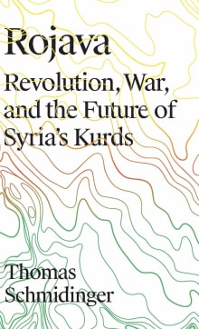 Rojava: Revolution, War and the Future of Syria's Kurds