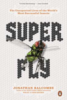 Super Fly: The Unexpected Lives of the World's Most Successful Insects