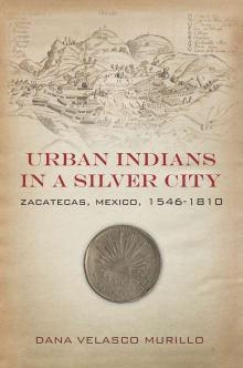 Urban Indians in a Silver City: Zacatecas, Mexico, 1546-1810